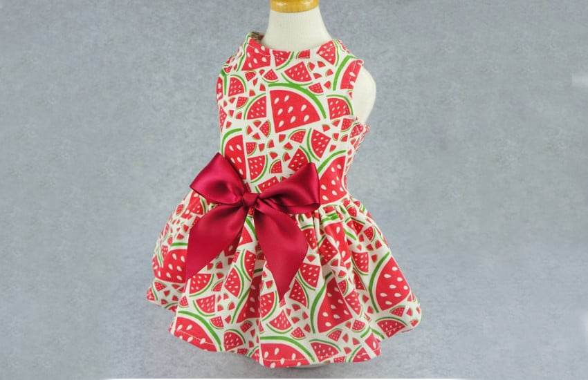 watermelon dress for Cavoodle