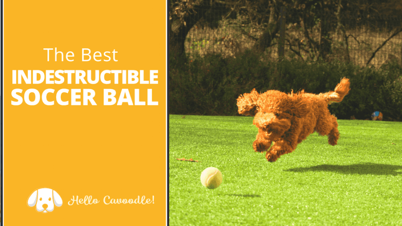 best indestructible soccer ball